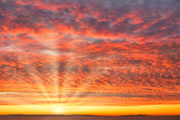 Fiery Sunrise Sky with Dramatic Mackerel Clouds, Sun and Sun Rays