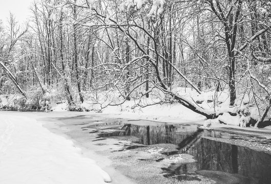 A fresh winter snowfall in Marott Park in Indianapolis, Indiana.