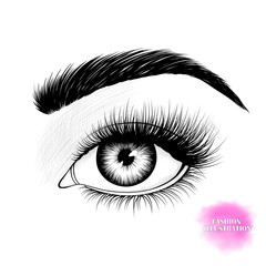 Black and white hand-drawn realistic image of eye with eyebrow and long eyelashes. Fashion illustration. Vector EPS 10.