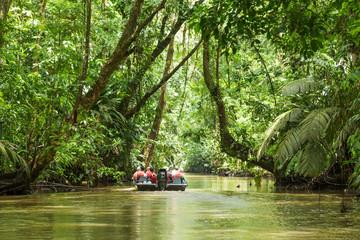 Tortuguero National Parc Costa Rica Fotomurales