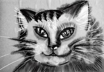 cat - hand drawn illustration - wet aquarelle