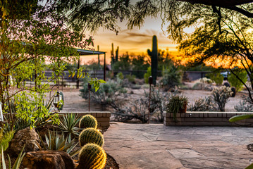 Printed roller blinds Gray traffic Arizona Patio at Sunset