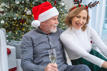 Cheerful mature people sitting near Christmas tree