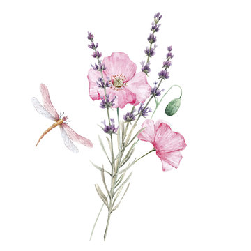 Beautiful watercolor floral bouquet with isolated lavanda and pink poppy flowers. Stock illustration.