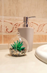 Bathroom detail with soap dispenser and decorative plant