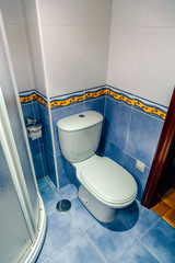 Interior of small bathroom with toilet and shower screen