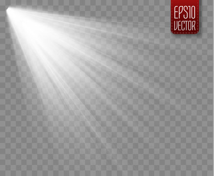 Spotlight isolated on transparent background. Vector sunlight with rays and beams.