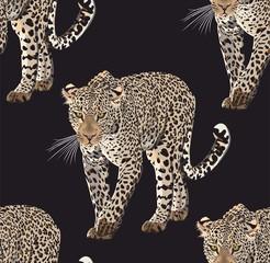Vector sketch of walks leopard.Seamless leo pattern.Animal print. - 307402196