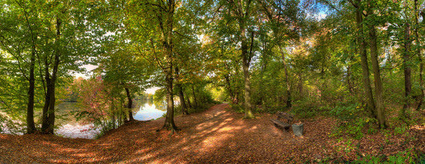 Panoramafoto eines Herbstwaldes an einem Weiher