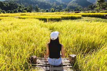 Traveler woman on rice field