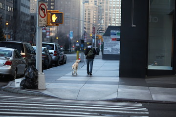 man and dog walking on New York sidewalk in winter