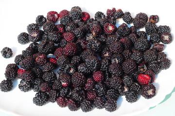 Sweet Blackberry on the plate. Blackberries healthy food