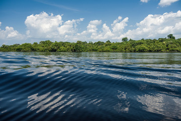 Dazzling view of Amazon river waters