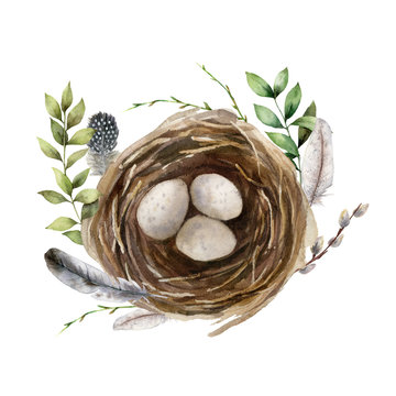 Watercolor easter card with birds nest and branch. Hand painted spring nest with eggs, feathers and willow isolated on white background. Holiday wildlife illustration for design, print or background.
