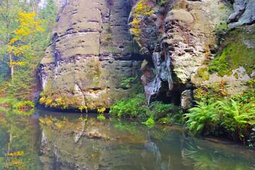 Kirnitzschtal in der Saechsischen Schweiz - Kirnitzschtal in the Elbe sandstone mountains