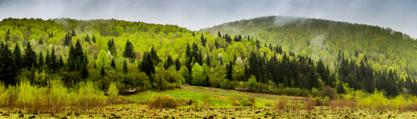 In de dag Pistache panorama of the Carpathian mountains