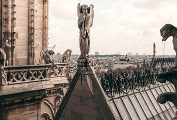 Tuinposter Historisch mon. Notre Dame Cathedral Rooftop In Paris France