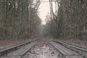 Fotobehang Spoorlijn lost railway in the forest