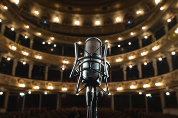 Foto op Aluminium Amusementspark Closeup of microphone on Lviv Opera House interior