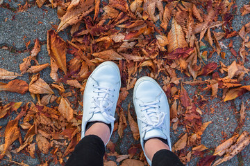 Low section of woman wearing white shoes standing on autumn leaves