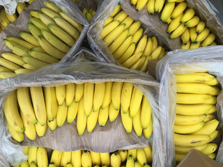 Close-up full frame view of a stack of many containers of Bananas displayed in a box at a market stand