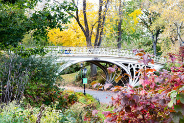 Central Park fall landscape scene with an old bridge surrounded by colorful trees in Manhattan New York City
