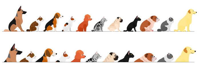 set of  side view  dogs and cats border