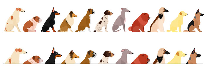 set of  side view large dogs border