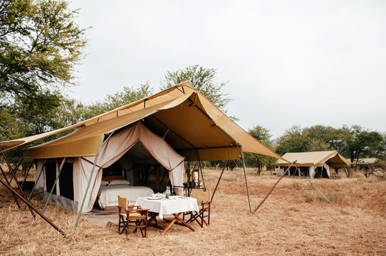 Luxury Safari tent camp in Serengeti Savanna forest - Glamping travel in Africa wild forest