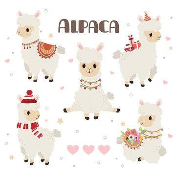 The collection of cute alpaca in the white backgrond and heart and star set. The character of cute alpaca in any action. some alpaca is sitting and standing. The alpaca wear a hat and winter hat.