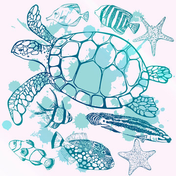 Sea turtle and tropical fish. Marine set. Perfect for invitations, greeting cards, print, banners, poster for textiles, fashion design.