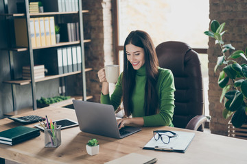 Profile photo of pretty young business lady looking screen notebook table modern user chatting partners drink hot tea mug sitting boss chair wear green turtleneck modern interior office Wall mural