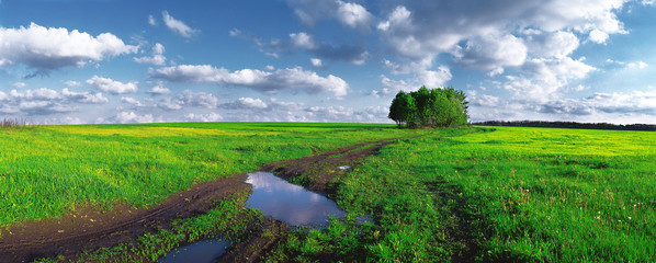 Dirt road in the middle of the field after the rain. Ukraine