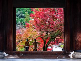 秋の京都 南禅寺 三門から眺める法堂