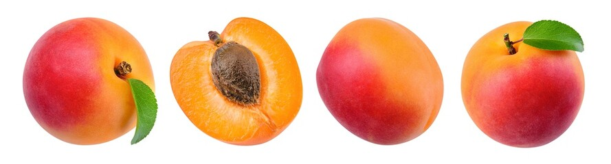 Apricot isolate. Apricots on white. Apricot set with clipping path.