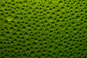 Abstract liquid background fresh green vegetable juice with water bubbles, geometric circles chlorophyll