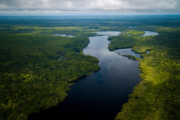 The mouth of the Jaú River is within the Jaú National Park and houses great biodiversity of the Amazon biome. amazonas, Brazil