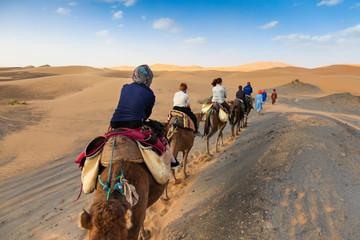 Poster Kameel camel caravan in the desert
