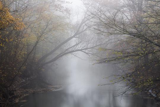 Fluss in den Nebel