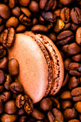 Cooffee Flavoured Macaroon. Close Up Studio Photo
