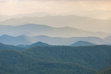 Poster Groen blauw Foggy Mountain Landscape