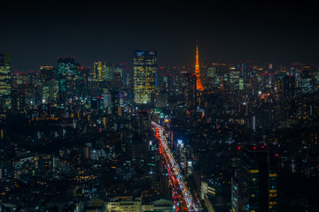 日本 首都東京 高層ビルのある風景 typical sight of Tokyo, Japan