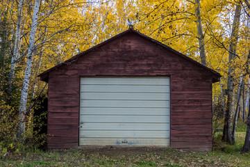 廃墟小屋 decayed ruined hut in Canada