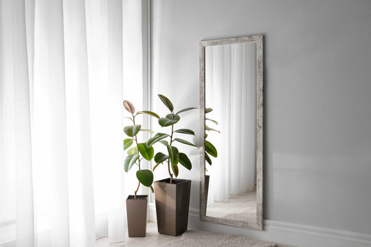 Large mirror and plants near window in light room