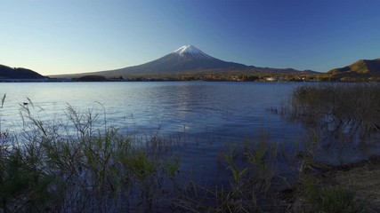 Fototapete - Mountain fuji with grass foreground, Kawaguchiko Lake, Japan
