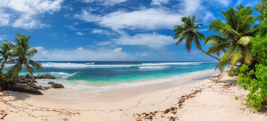 Wall Mural - Panoramic view of exotic tropical beach, coconut palms and blue sea in Seychelles.