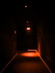Empty dark corridor illuminated with orange lights in a building