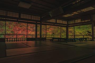 京都 お寺 寺 紅葉 光明寺 寺社仏閣 写真素材