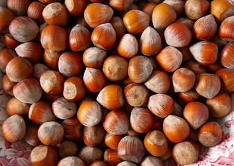 close up of hazelnuts,food background