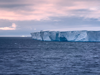 Large Tabular Iceberg Floating In Bransfield Strait Near The Northern Tip Of The Antarctic Peninsula, Antarctica